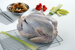 Raw turkey being prepared to cook Royalty Free Stock Photo