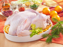 Raw turkey in the bowl. Arrangement with raw turkey in the bowl and spices Royalty Free Stock Photo