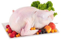 Raw turkey. Isolated Stock Images