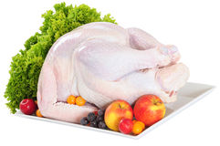 Raw turkey. Isolated Stock Photo