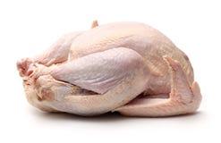 Raw Turkey Stock Photo