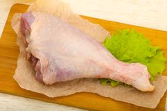 Raw turkey leg. Ready for cooking royalty free stock photography