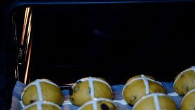 Raw unbaked buns. Put in the oven Hot Cross Buns. HD stock video footage