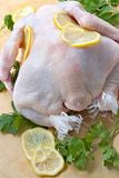 Raw uncooked chicken Stock Photography