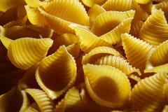 Conchiglioni italian pasta stock image