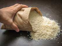 Raw uncooked hashemi local rice royalty free stock photography