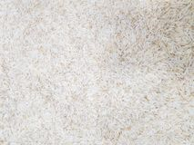 Raw uncooked heap of rice at supermarket for sale royalty free stock photography
