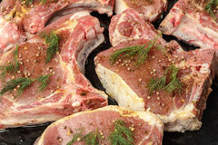 Raw uncooked juicy steak meat with dill, pepper and spices on the side Royalty Free Stock Image