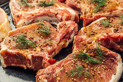 Raw uncooked juicy steak meat with dill, pepper and spices on the side Royalty Free Stock Photos