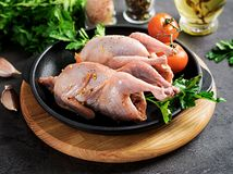 Raw uncooked quail. Ingredients for cooking healthy meat dinner. On dark background royalty free stock photos