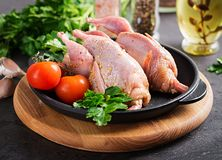 Raw uncooked quail. Ingredients for cooking healthy meat dinner. Dark background royalty free stock photo