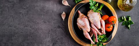 Raw uncooked quail. Ingredients for cooking healthy meat dinner. Banner. Top view royalty free stock photography