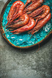 Raw uncooked red shrimps on ice, grey concrete background Royalty Free Stock Image