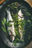 Raw uncooked sea bass with herbs on plate, top view. Cooking fish dinner. Flat-lay of raw uncooked sea bass fish with herbs on black plate over rustic wooden royalty free stock photography