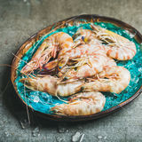 Raw uncooked tiger prawns on chipped ice in blue tray Royalty Free Stock Image