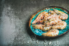 Raw uncooked tiger prawns on chipped ice, concrete background Stock Images