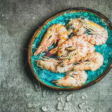 Raw uncooked tiger prawns on chipped ice, copy space Royalty Free Stock Photo