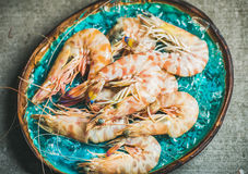 Raw uncooked tiger prawns on chipped ice, fresh seafood Royalty Free Stock Photo