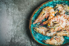 Raw uncooked tiger prawns on chipped ice, grey background Stock Images