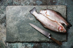 Raw uncooked Trout fish and knife Royalty Free Stock Photos