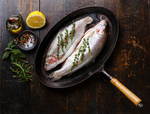 Raw uncooked Trout fish on pan Stock Photo