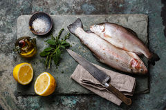 Raw uncooked Trout fish with spices and herbs Stock Photography