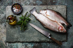 Raw uncooked Trout fish with spices and herbs Royalty Free Stock Photos