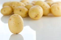 Baby Potatoes. Raw Unpeeled Baby Potatoes, Studio Shot Stock Photography