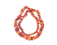 Raw Unpolished Adult Baltic Amber Necklace Stock Photography
