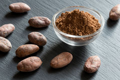 Raw unroasted cocoa powder with raw cacao nibs Royalty Free Stock Photo
