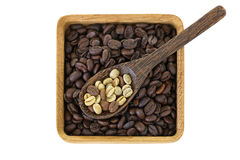 Raw unroasted green coffee berry seeds on top of roasted coffee. Spoon of dried raw unroasted green coffee berry seeds on top of roasted coffee beans isolated on Royalty Free Stock Photo