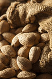 Raw Unshelled Organic Almonds Royalty Free Stock Photo