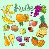 Raw vegan. Beautiful hand drawn illustration fruits on the green background Stock Image