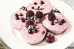 Raw vegan berry cheesecake with coconut, portioned Royalty Free Stock Image