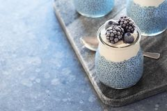 Raw Vegan Blue Chia Pudding with Frozen Berries Stock Photo