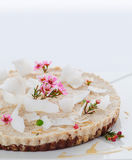 Raw vegan coconut tart. With shredded coconut topping royalty free stock image
