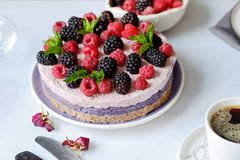 Raw vegan cake with raspberries and bluberries on white table Stock Image