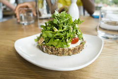 Raw Vegan Food Dish. On white plate and wood table royalty free stock image