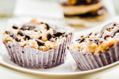 Raw vegan nuts dessert with blueberries, coconut and chocolate.H Stock Images