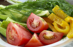 Raw vegetable. Raw tomato, pepper and cucumber on the plate stock images