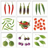 Raw vegetable Stock Image