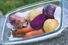 Raw vegetable with potatoes Royalty Free Stock Images
