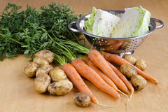 Raw vegetable for soup Stock Photos