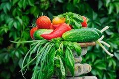 Raw Vegetables Stock Photo