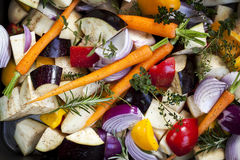 Raw Vegetables in Baking Dish Royalty Free Stock Photography