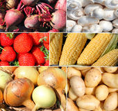 Raw vegetables and fruit montage Stock Photography