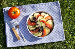 Raw vegetables for ratatouille. Raw tomatoes, zucchini and eggplant with red basil for ratatouille on a round ceramic plate on blue cloth background and green Stock Photography