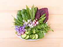 Raw vegetables. Salad with different leaves, vegetables and flowers stock images