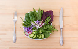 Raw vegetables. Salad with different leaves, vegetables and flowers stock photography