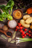 Raw vegetables with spices Royalty Free Stock Photography